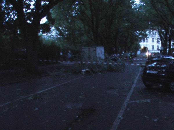 An der Einsatzstelle lagen zwei große Äste mit einem Durchmesser von ca. 40cm auf der Straße und auf einer Mauer.