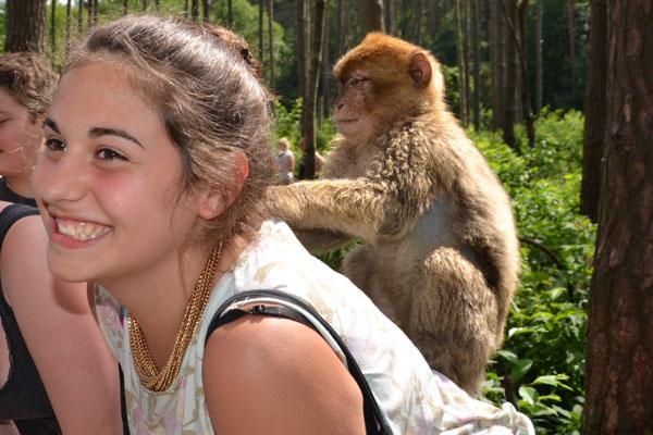 Im Affenwald gab es lustige Begegnungen.