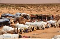 Im Transitcamp, etwa drei Kilometer von Dolo Ado entfernt, warten die Flüchtlinge auf einen Transport in eines der vier Flüchtlingslager.