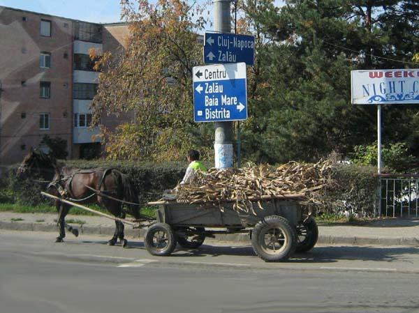 Ab Rumänien sehen wir viele Pferdewagen.