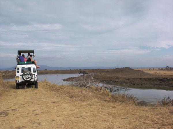 Safari, Beobachtungen am Wasserloch.