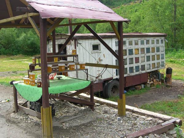 In Rumänien stehen Imker mit Bauwagen am Straßenrand, im vorderen Teil wohnt der Imker und im hinteren Teil sind die Bienenkörbe. Ein oder zwei Hunde passen auf.