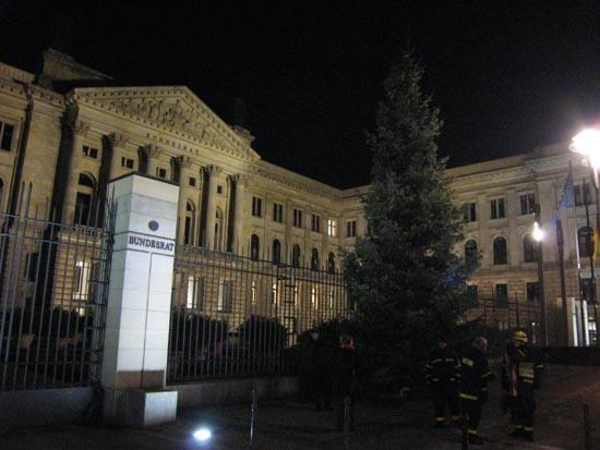 Der Baum steht. Am Freitag wird Hamburgs Ersten Bürgermeister und derzeitiger Bundesratspräsidenten Ole von Beust die Beuchtung einschalten.