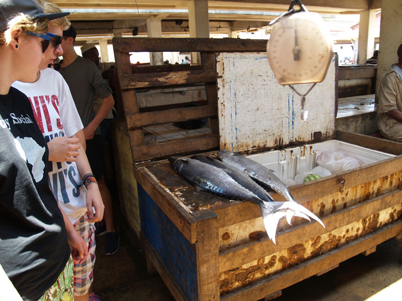 Fischmarkt in Dar es Salaam
