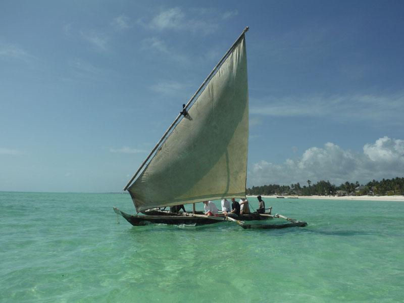 Mit dem Boot ging es zum Riff.